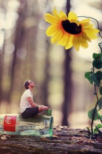 flowers_bottles_men_cocacola_depth_of_field_tree_trunk_photo_manipulation_men_with_glasses_natural_Wallpaper_1920x1200_www.wall321.com